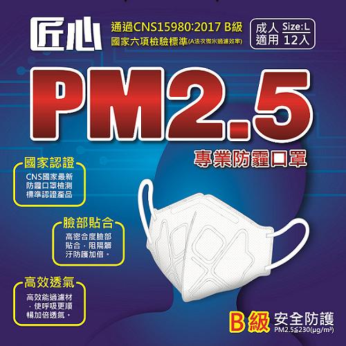 PM2.5專用 3D立體防護口罩12入/盒 1盒