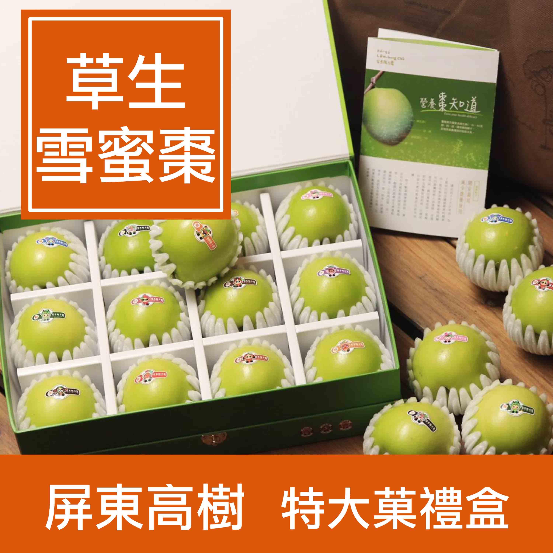 【一籃子】屏東高樹【草生雪蜜棗】特大菓12顆 禮盒
