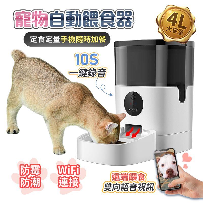FJ高清遠端觀看寵物自動餵食器PW3連接WIFI可觀看