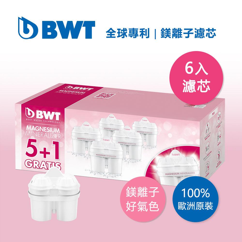 【BWT德國倍世】【台灣總代理】Mg2+鎂離子8週長效濾芯5+1入