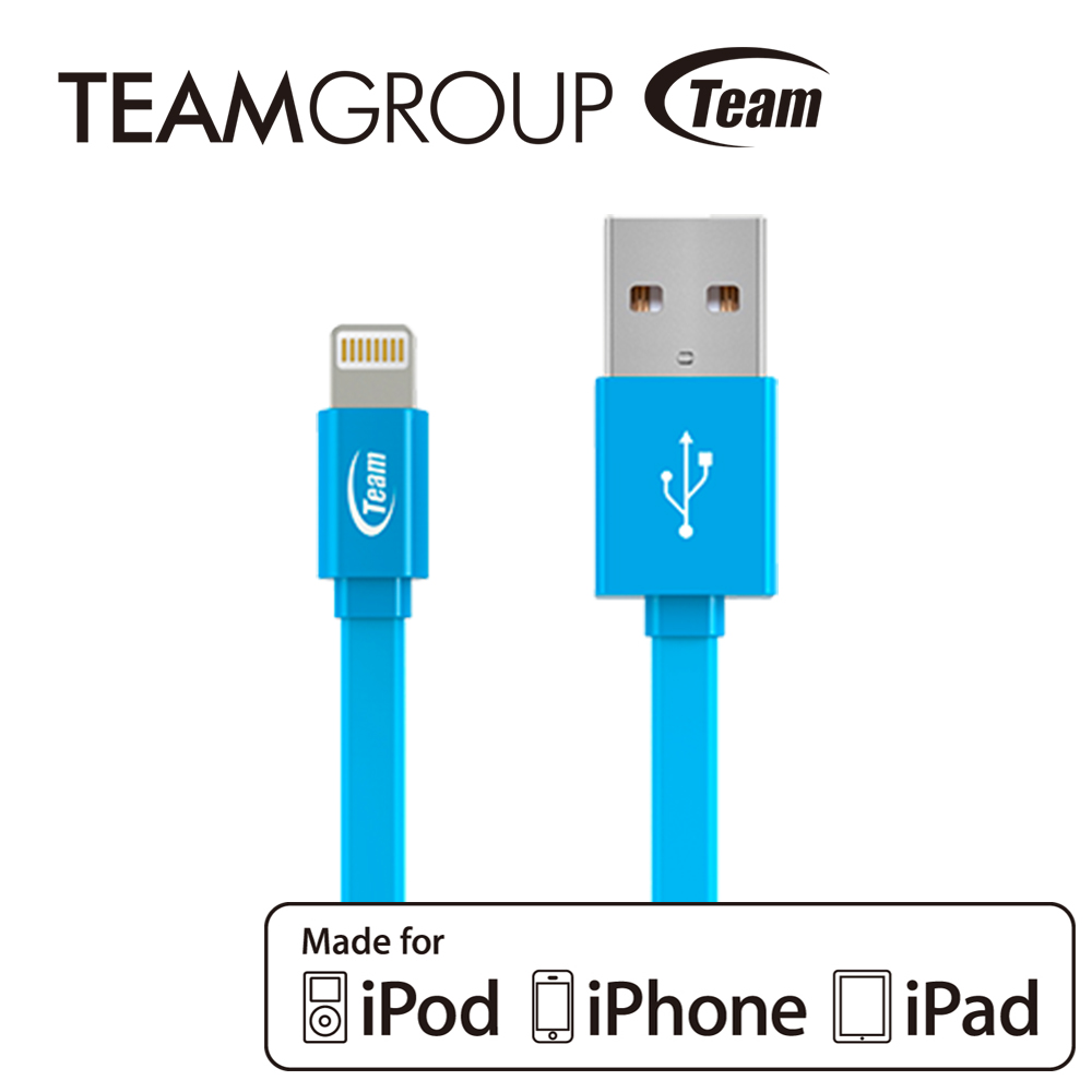 TEAM十銓科技 Apple原廠認證充電/傳輸線 TWC08 - 藍色
