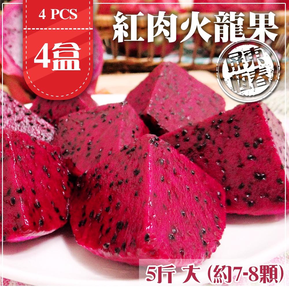 【家購網嚴選】屏東紅肉火龍果 5斤x4盒 大(約7-8顆/盒)