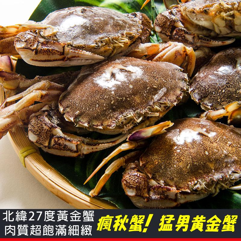 【鮮綠生活】黃金蟹 500G 共4盒 (約5-6隻/盒)