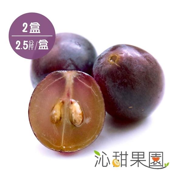 預購《沁甜果園SSN》新社古家御品巨峰葡萄2.5公斤/箱(共2箱)