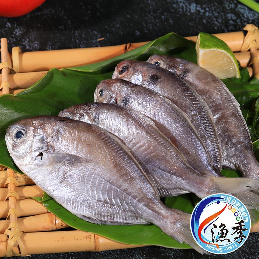 【漁季】澎湖野生現撈肉魚/肉鯽仔5包(500G±10%/包)
