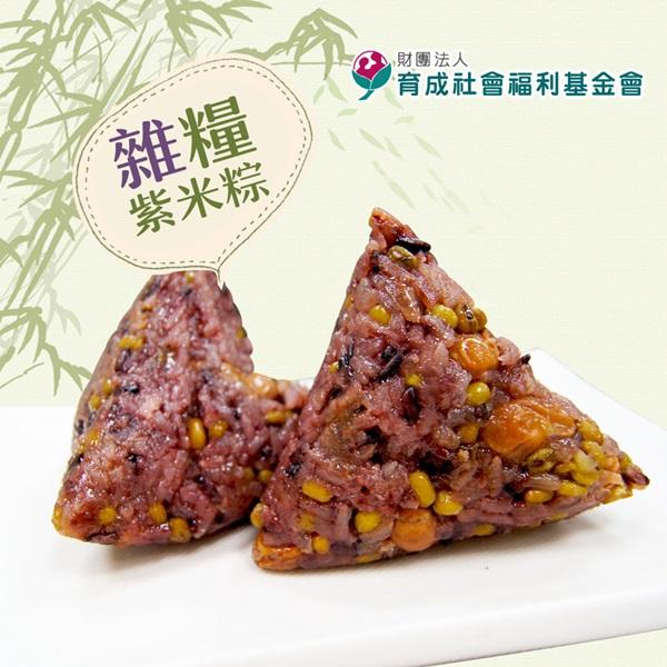 預購《育成社會福利基金會》永和食堂-雜糧紫米粽(160g/顆,共六顆)