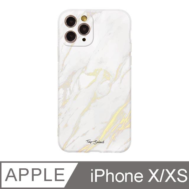 iPhone X/Xs 5.8吋 Nordic北歐大理石iPhone手機殼 白金大理石