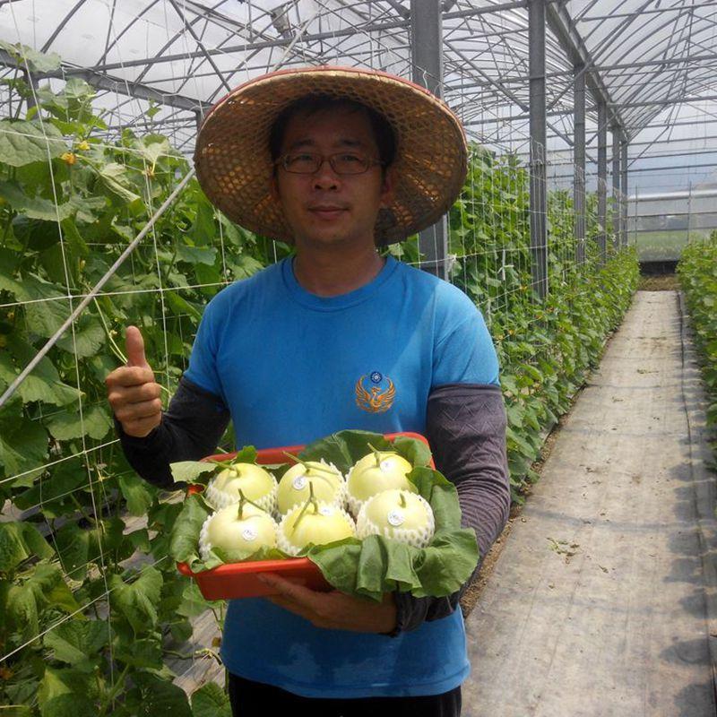 台灣農場趴趴走-[宜蘭]採果體驗-藤結教育農場(番茄)