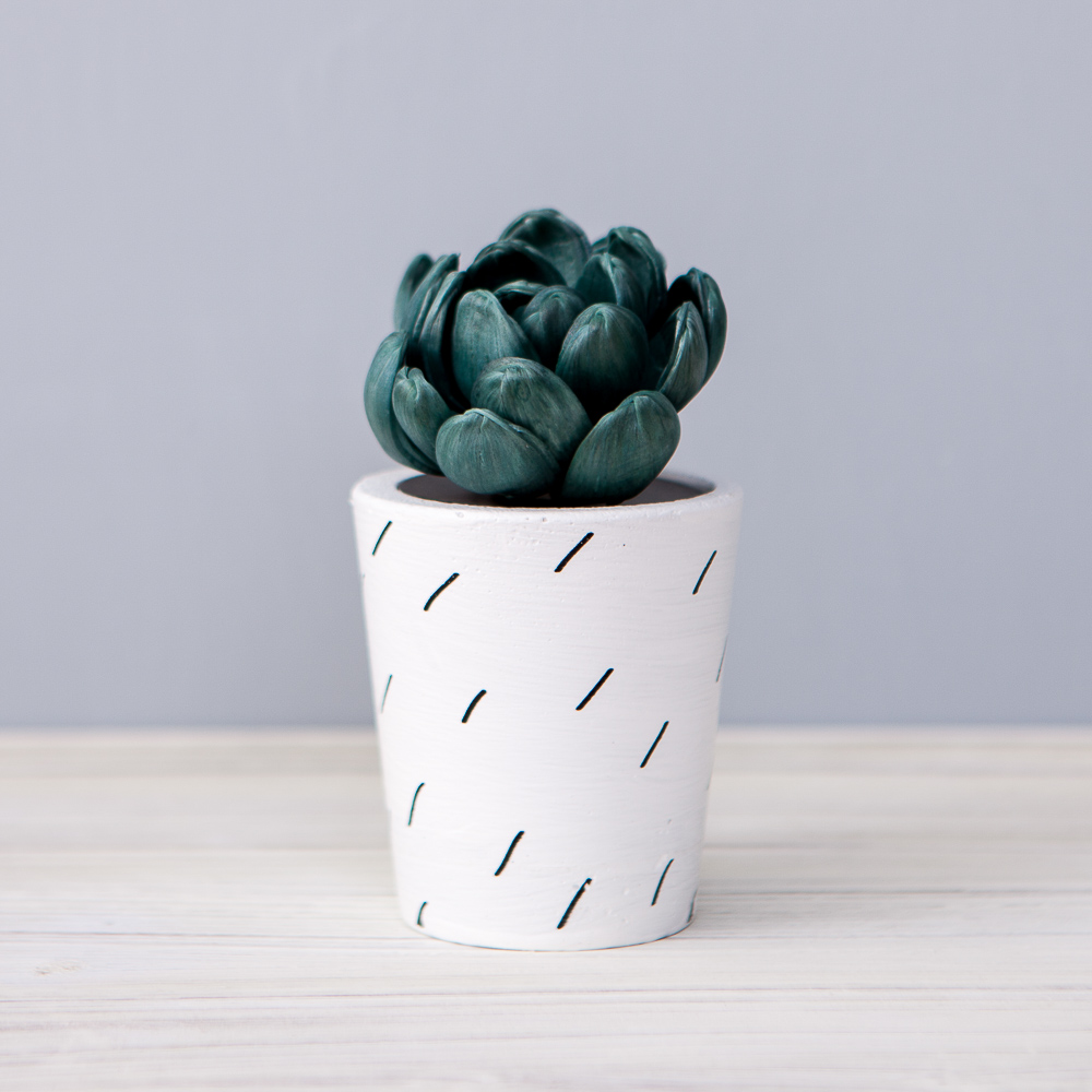Cactus希望擴香花50ml-生活工場