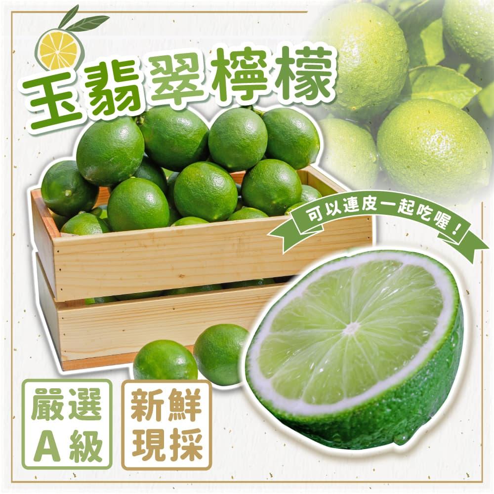 【菊頌坊】玉翡翠檸檬 5斤裝x4盒