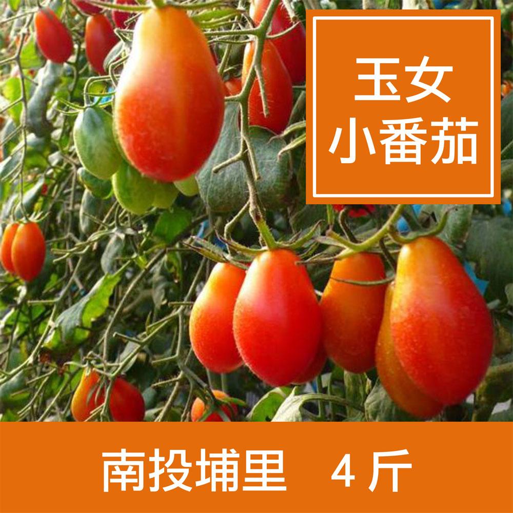 預購★【一籃子】南投埔里【薄皮‧玉女小番茄】4斤