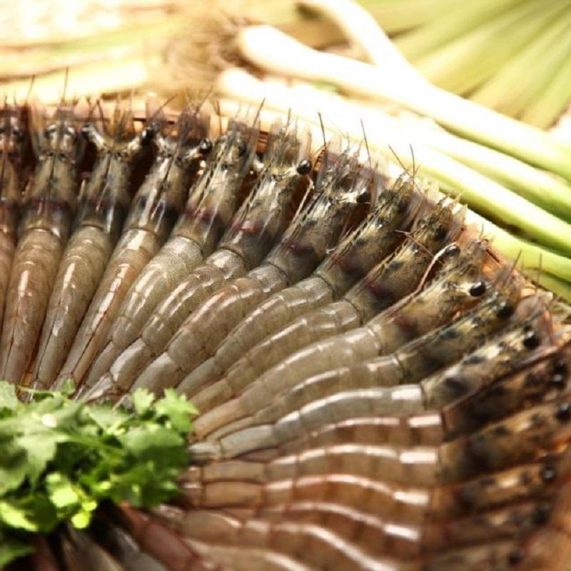 【綠安生活】大尾☆生鮮白蝦10包(20尾/300g±10g/包 )