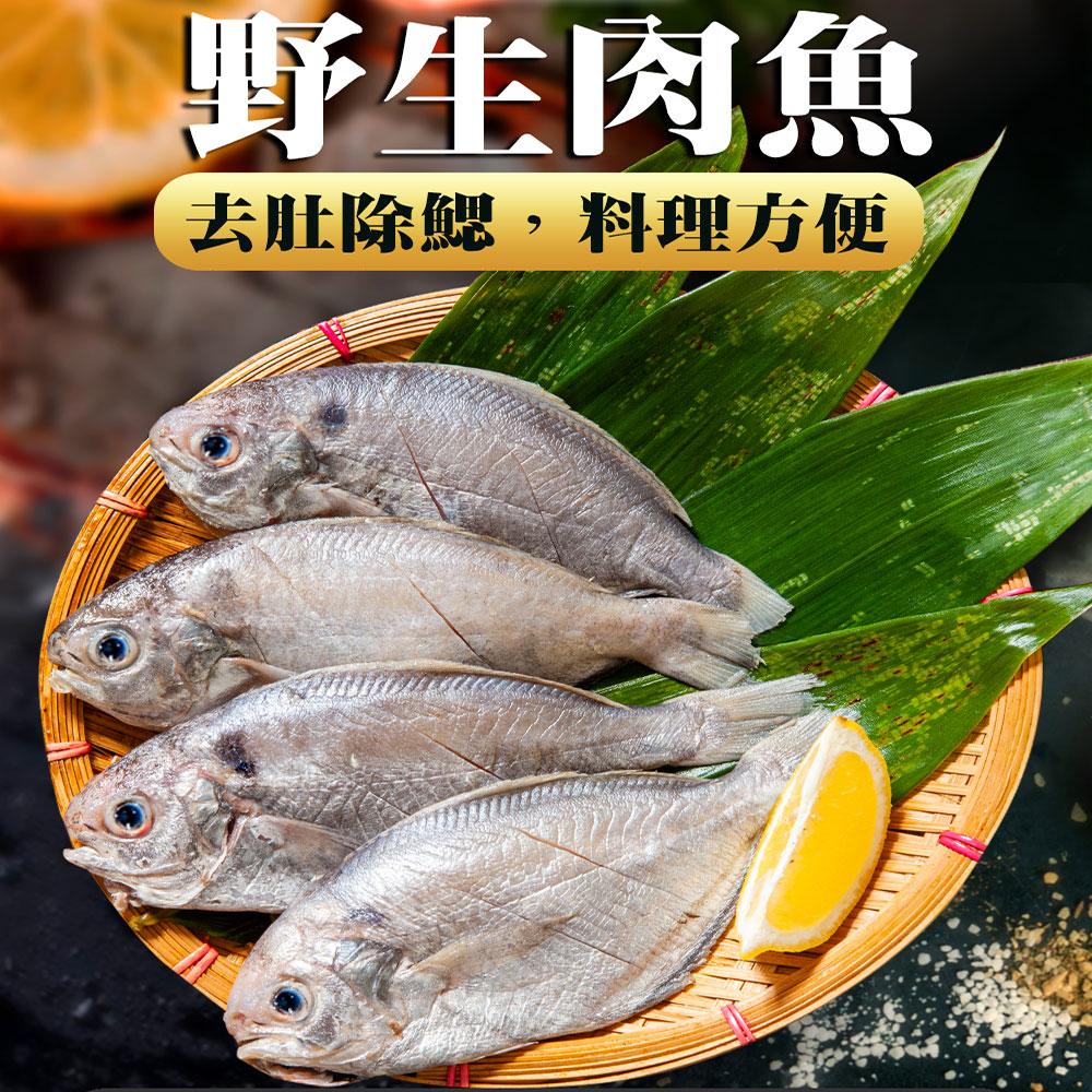 【鮮綠生活】超高CP值野生肉魚(4尾/包)共10包