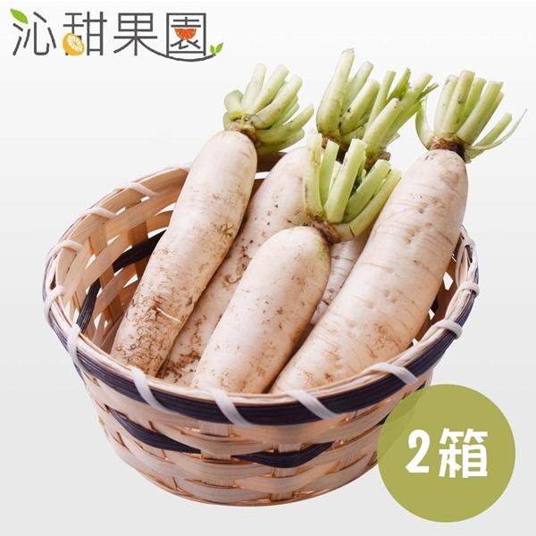 預購《沁甜果園SSN》美濃白玉蘿蔔5台斤/箱,(共2箱)