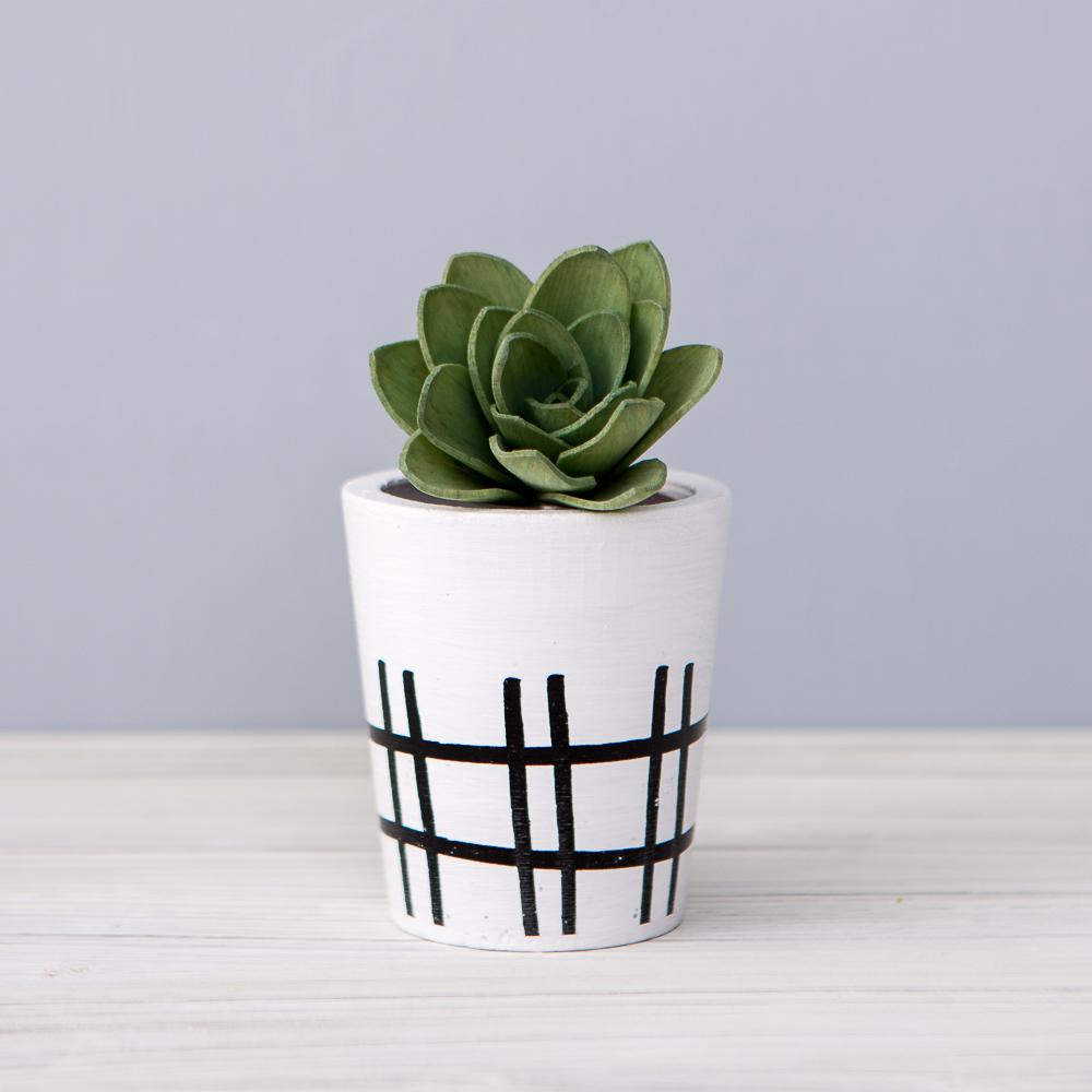 Cactus精靈擴香花50ml-生活工場