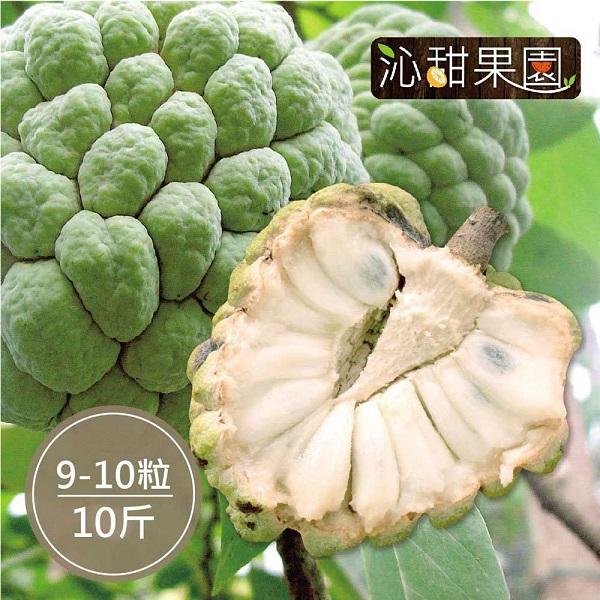 預購《沁甜果園SSN》台東大目釋迦(9-10顆裝/10台斤)