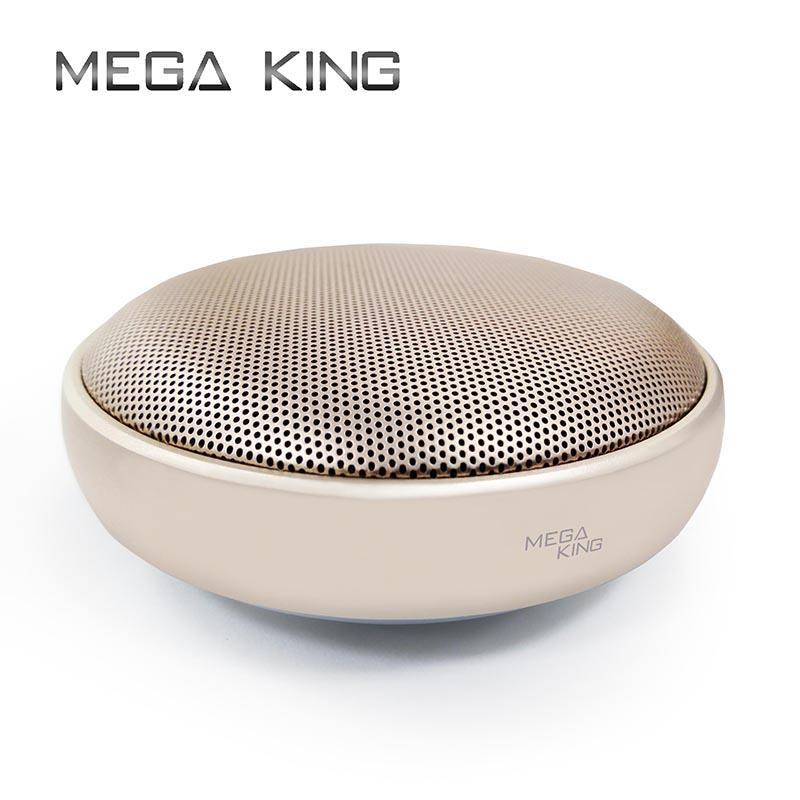 藍芽喇叭 MEGA KING MK501 金