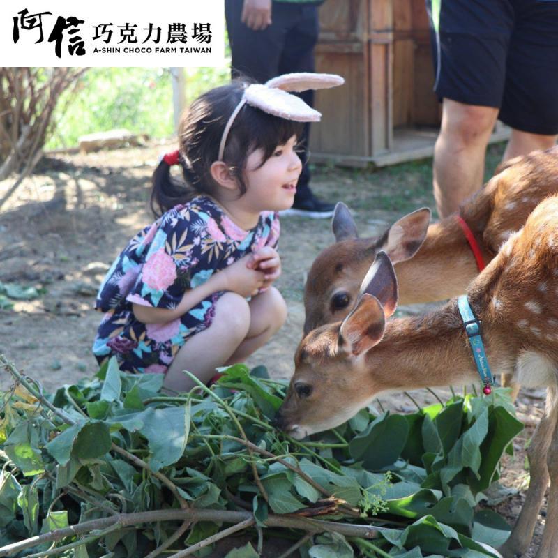 【墾丁】墾丁悠活渡假村X阿信巧克力農場 吃喝玩鹿 (不分平假日)