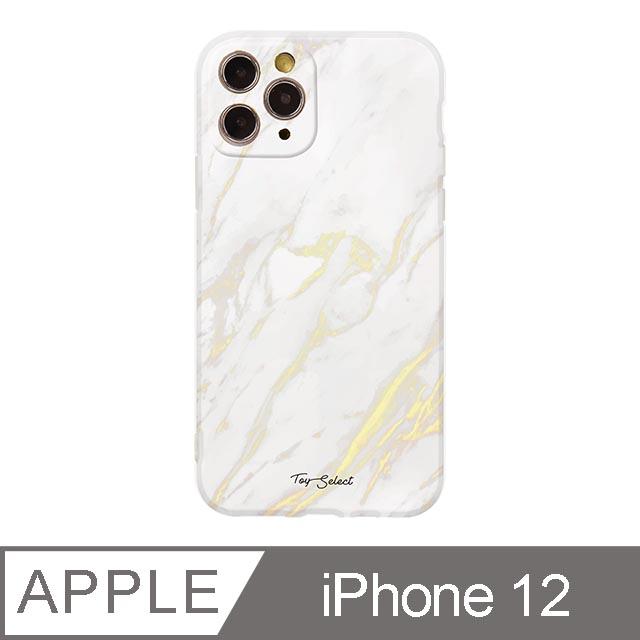 iPhone 12 6.1吋 Nordic北歐大理石iPhone手機殼 白金大理石