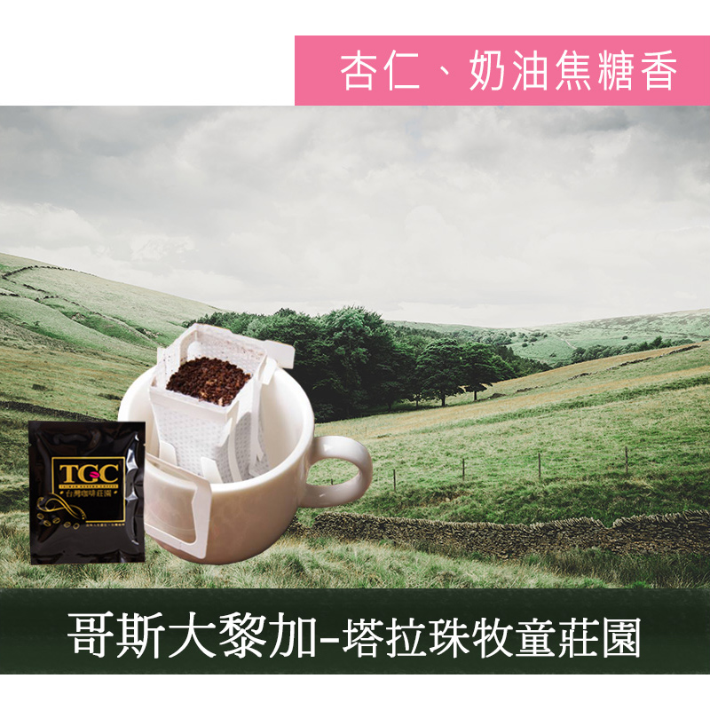 【TGC】塔拉珠牧童莊園 掛耳咖啡(50入)