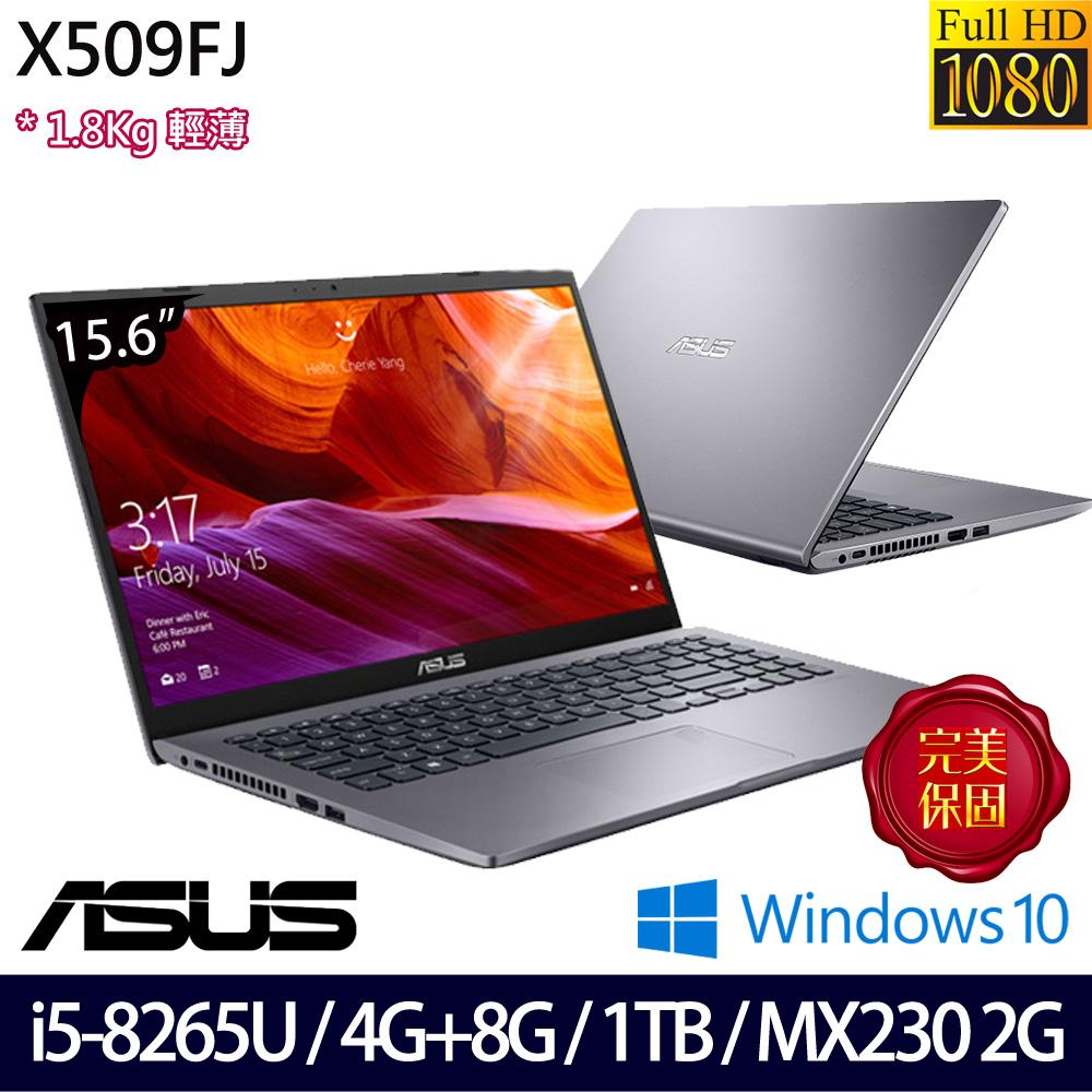 【記憶體升級】《ASUS 華碩》X509FJ-0111G8265U(15.6吋FHD/i5-8265U/4G+8G/1TB/MX230/Win10/兩年保)