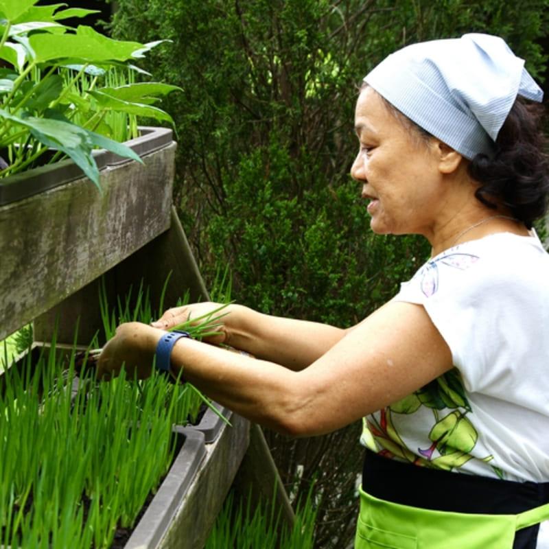 [台北]造訪老祖先的智慧森林深處的老灶腳(平日)-白石森活休閒農場