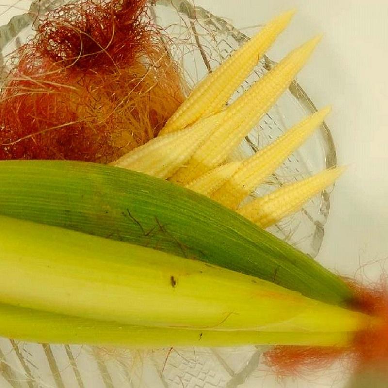 【綠安生活】產銷履歷帶殼紅鬚玉米筍1箱(7斤+-5%/75-100支/箱)-嚴選新鮮食材