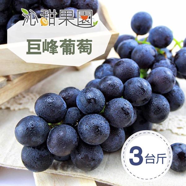 預購《沁甜果園SSN》苗栗巨峰葡萄(3台斤/箱)