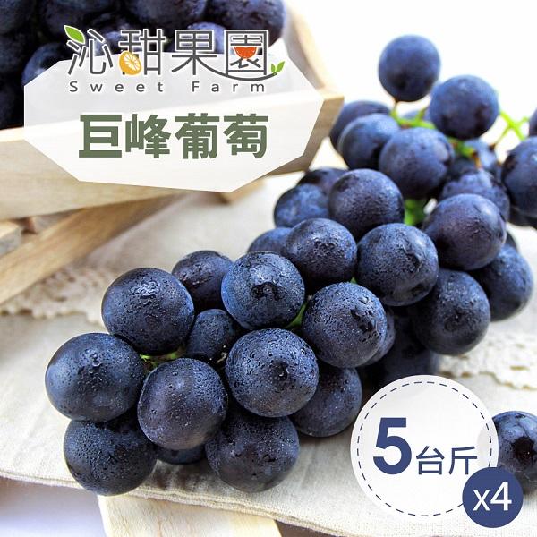 預購《沁甜果園SSN》苗栗巨峰葡萄5台斤/箱(共4箱)