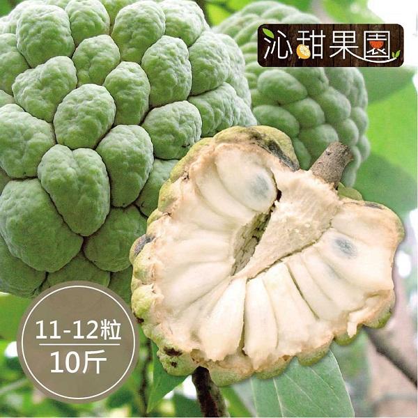 預購《沁甜果園SSN》台東大目釋迦(11-12顆裝/10台斤)