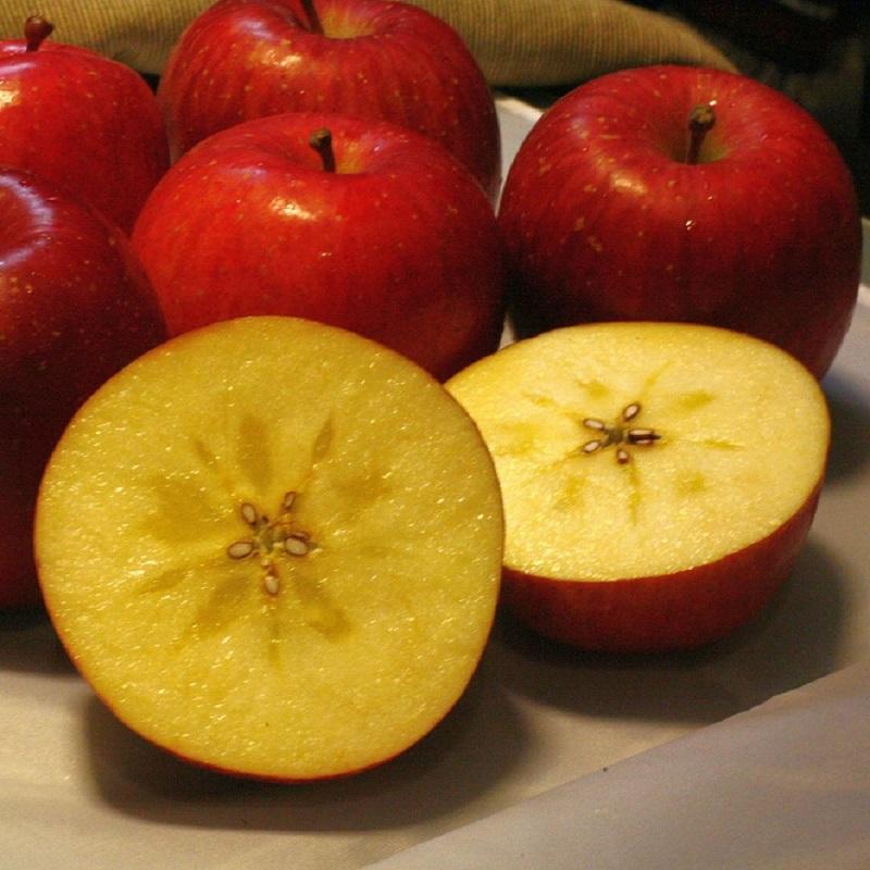 【綠安生活】日本青森蜜蘋果10顆禮盒(約2.5kg/盒)-香甜爽口,陽光蘋果美譽