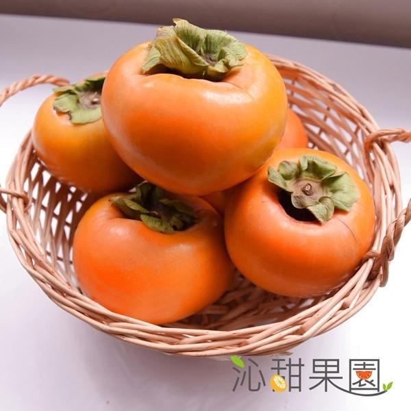 預購《沁甜果園SSN》高山甜柿7A禮盒(6粒裝)