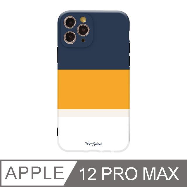iPhone 12 Pro Max 6.5吋 法式悠然線條iPhone手機殼 孤寂晚霞