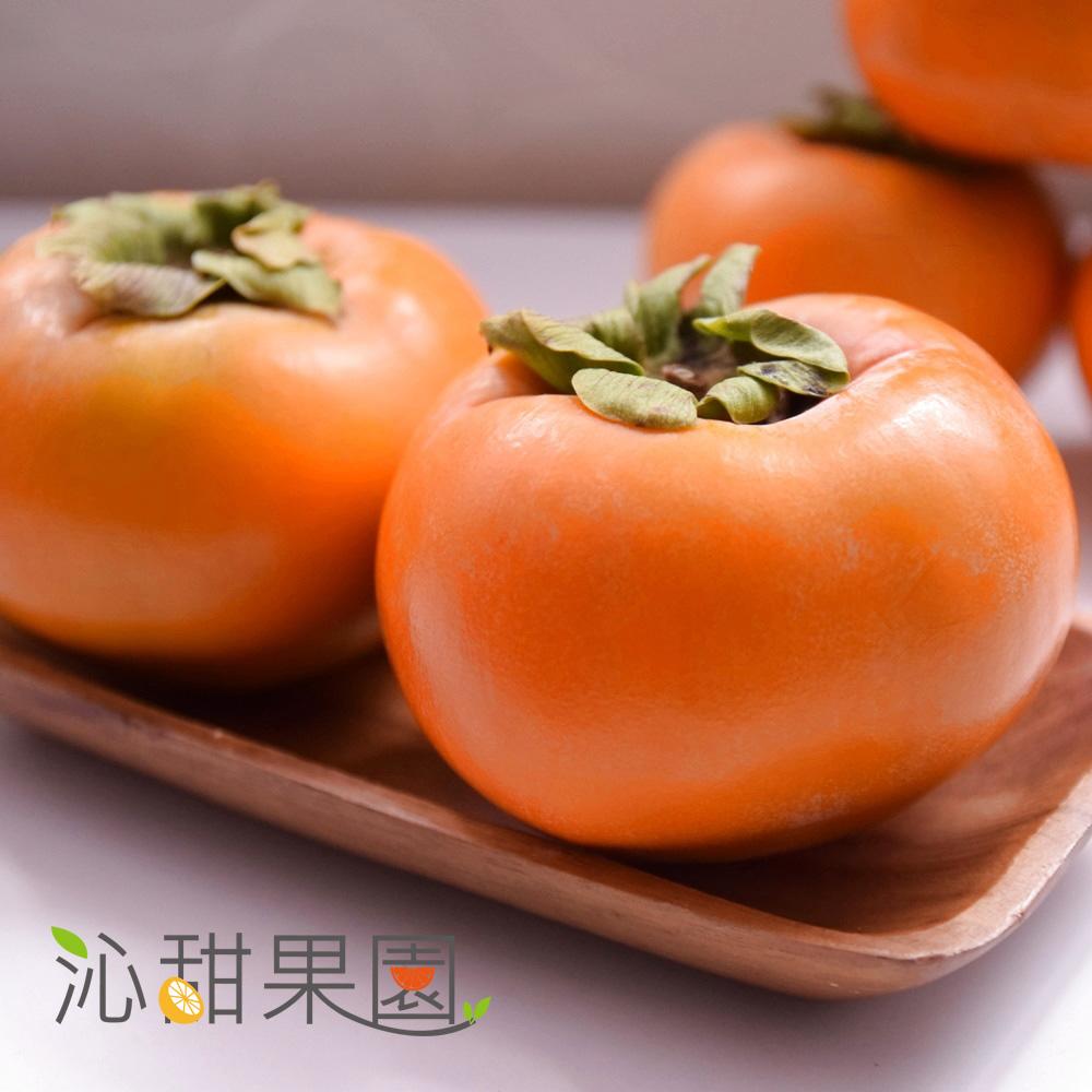 預購《沁甜果園SSN》高山甜柿6A禮盒(6粒裝)