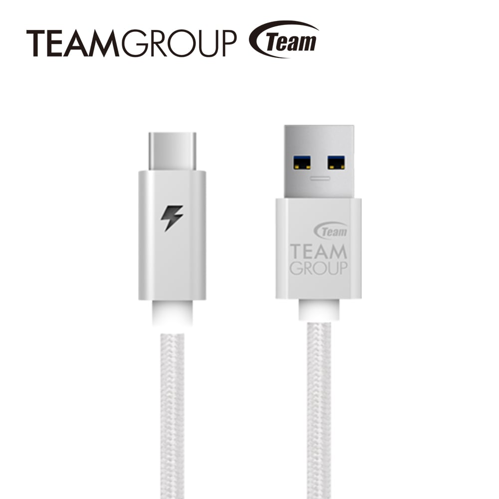 TEAM十銓科技 USB 3.1 Gen1 TypeC充電/傳輸線 TWC0A - 星河銀