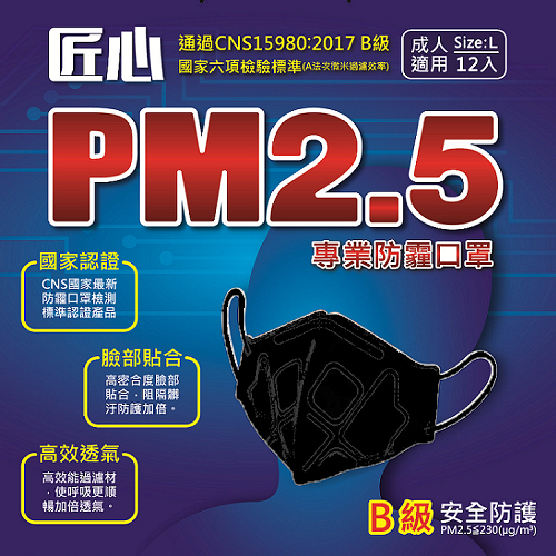 PM2.5專用 3D立體防護口罩12入/盒 1盒(黑色)