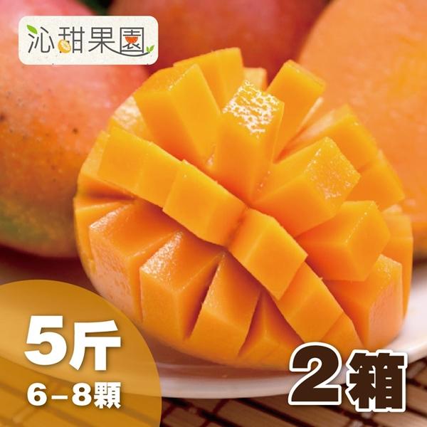 預購《沁甜果園SSN》台南愛文芒果6-8粒裝/5台斤/箱,(共2箱)