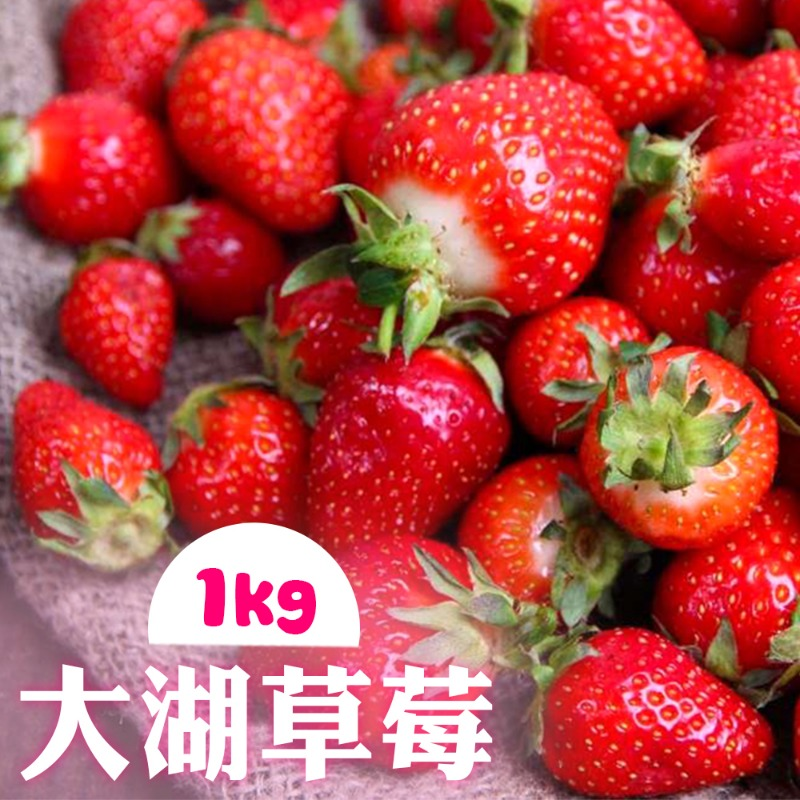 【家購網嚴選】大湖草莓 1公斤/盒 (2~3號果) 產地現採 低溫配送