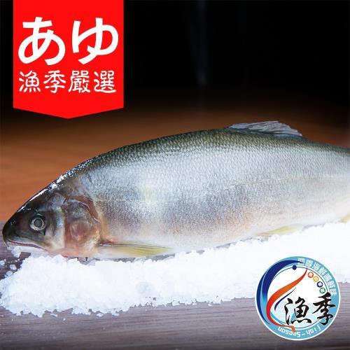 漁季嚴選宜蘭公香魚3盒(900g±10%)