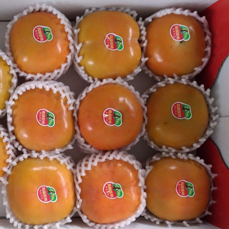 台灣農場趴趴走-[台中]採果體驗-水寨一方農場(甜柿、桶柑、臍橙、嘉寶果)