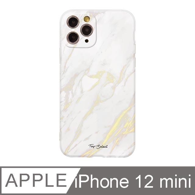 iPhone 12 Mini 5.4吋 Nordic北歐大理石iPhone手機殼 白金大理石